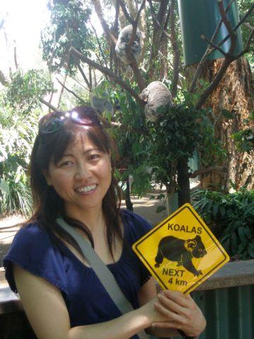 Koala next ...