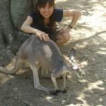 kangaroo is soft, tookangaroo is soft, too