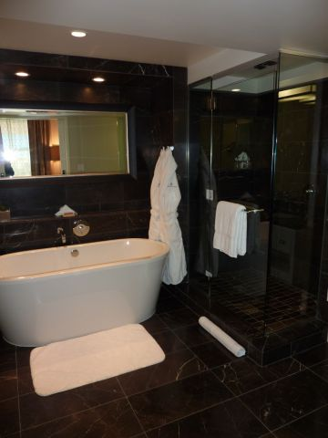 Barthroom right is shower